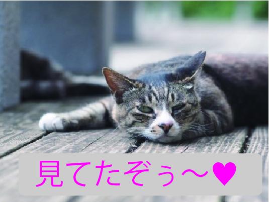 f:id:tsukurusendai:20171002152315j:plain