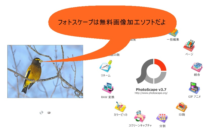 f:id:tsukurusendai:20180216080251j:plain