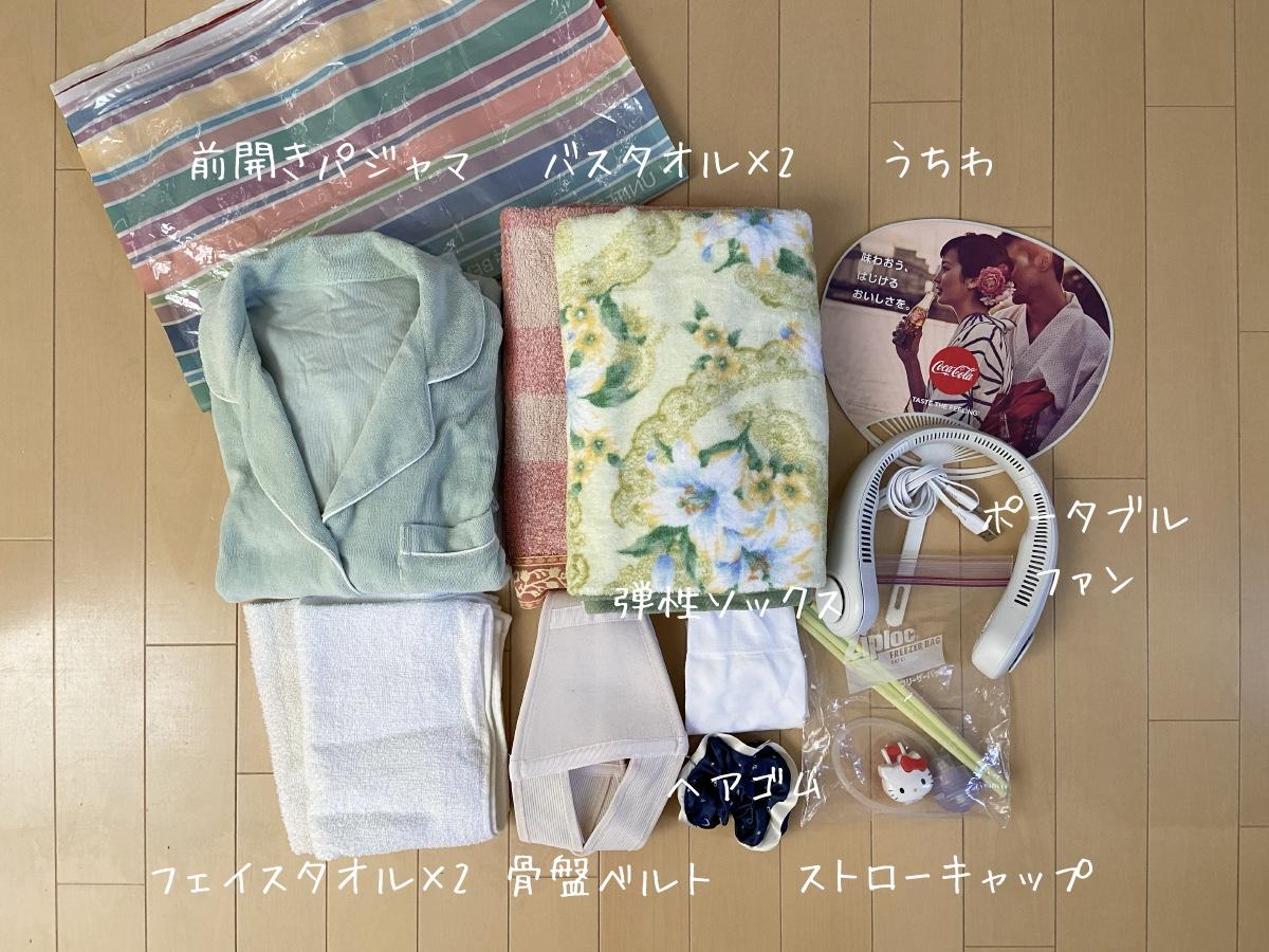 f:id:tsukushi-hochiminh:20201008011738j:plain