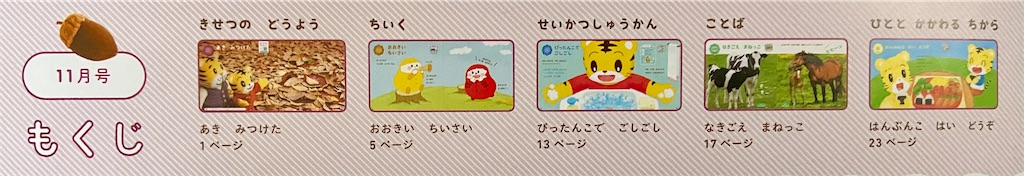 f:id:tsukushi-hochiminh:20210209151151j:image