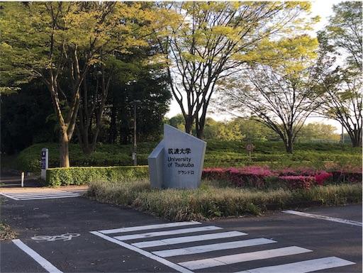 f:id:tsukutarou:20190217132255j:image