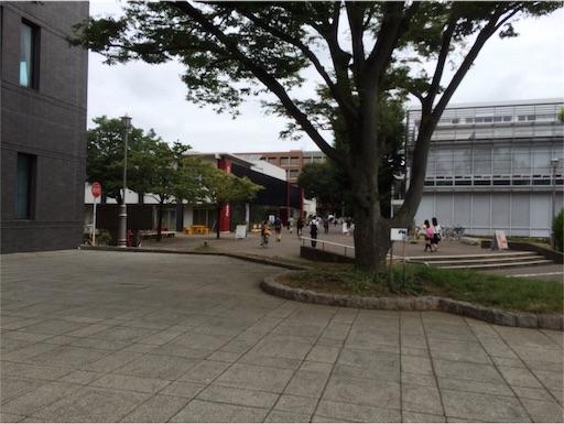 f:id:tsukutarou:20190219022907j:image