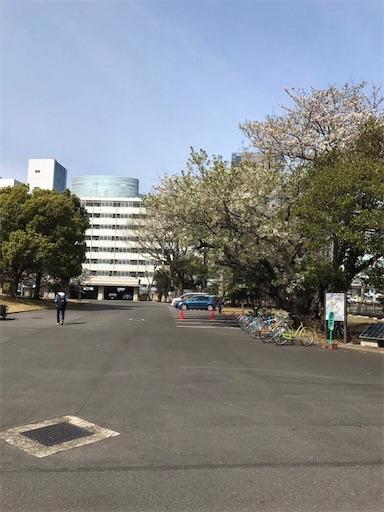 f:id:tsukutarou:20190227145415j:image