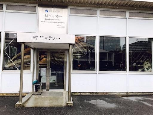 f:id:tsukutarou:20190227145442j:image