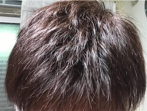 f:id:tsukutarou:20200603015411j:image