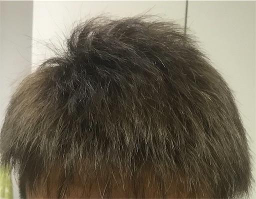f:id:tsukutarou:20210708205459j:image