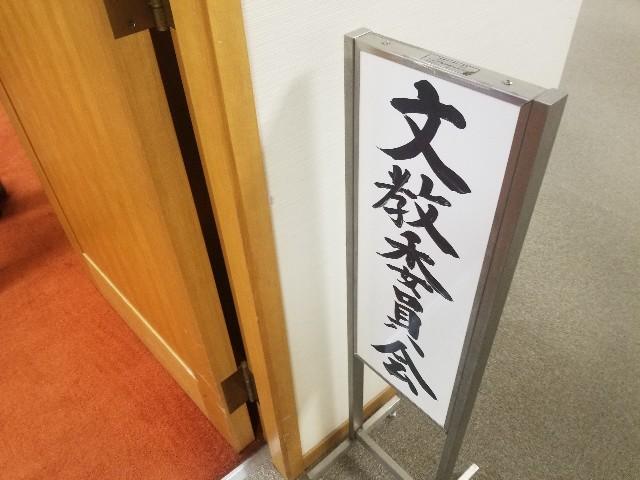 f:id:tsumagari2010:20191205223330j:plain