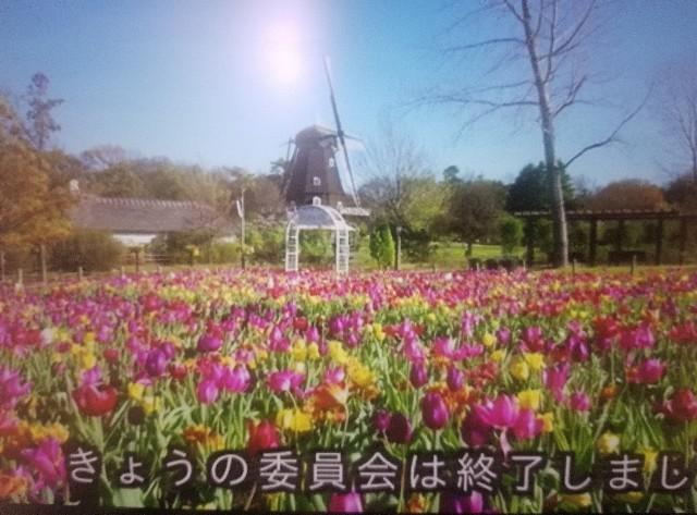 f:id:tsumagari2010:20191209161620j:plain