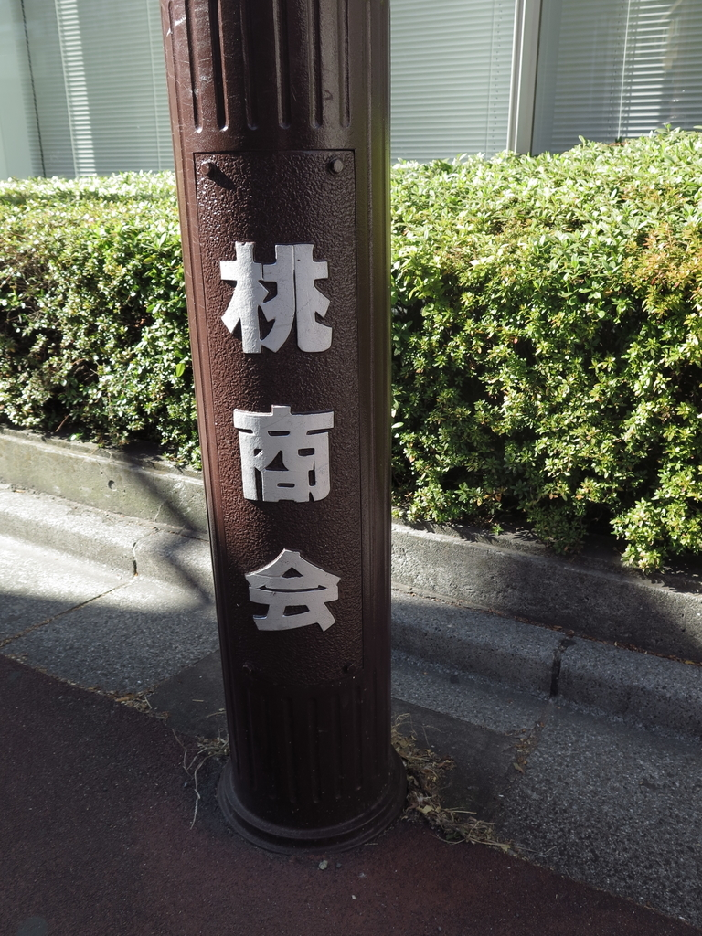 f:id:tsumakazu:20190206225046j:plain