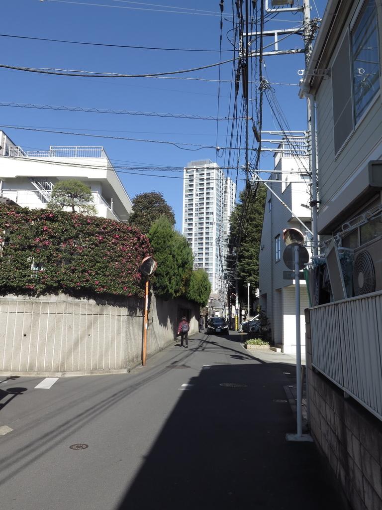 f:id:tsumakazu:20190206225157j:plain
