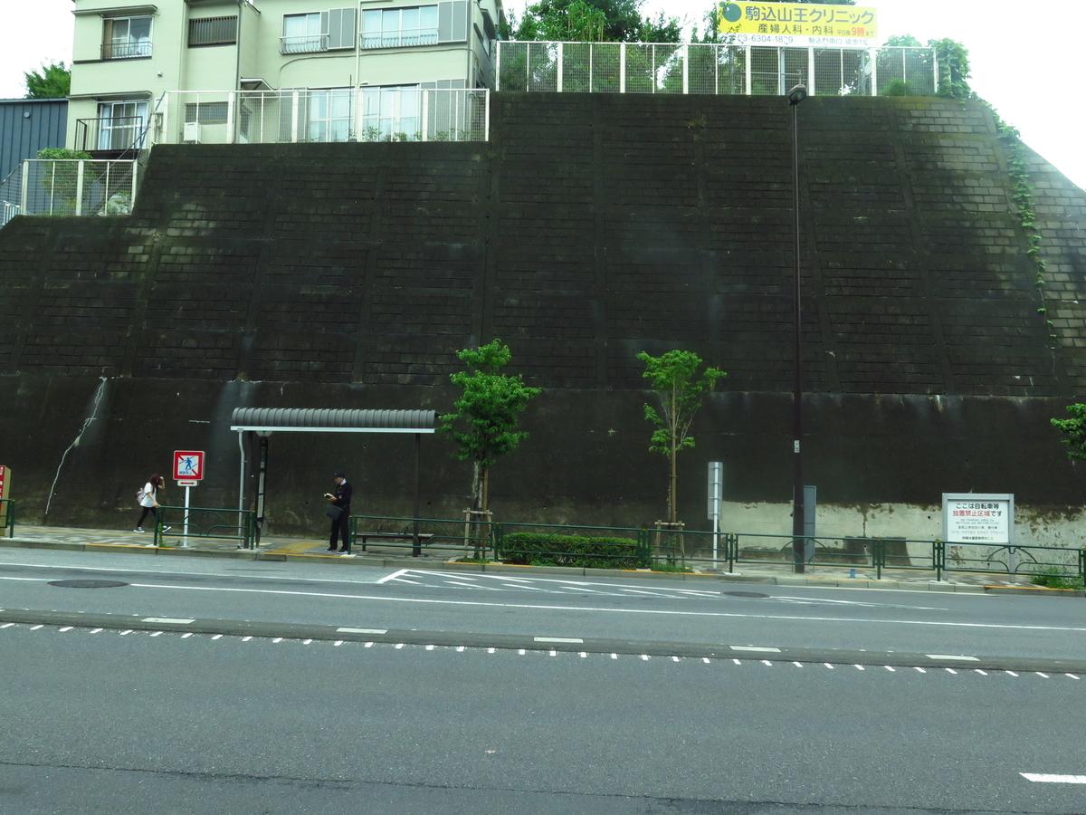 f:id:tsumakazu:20190713013119j:plain