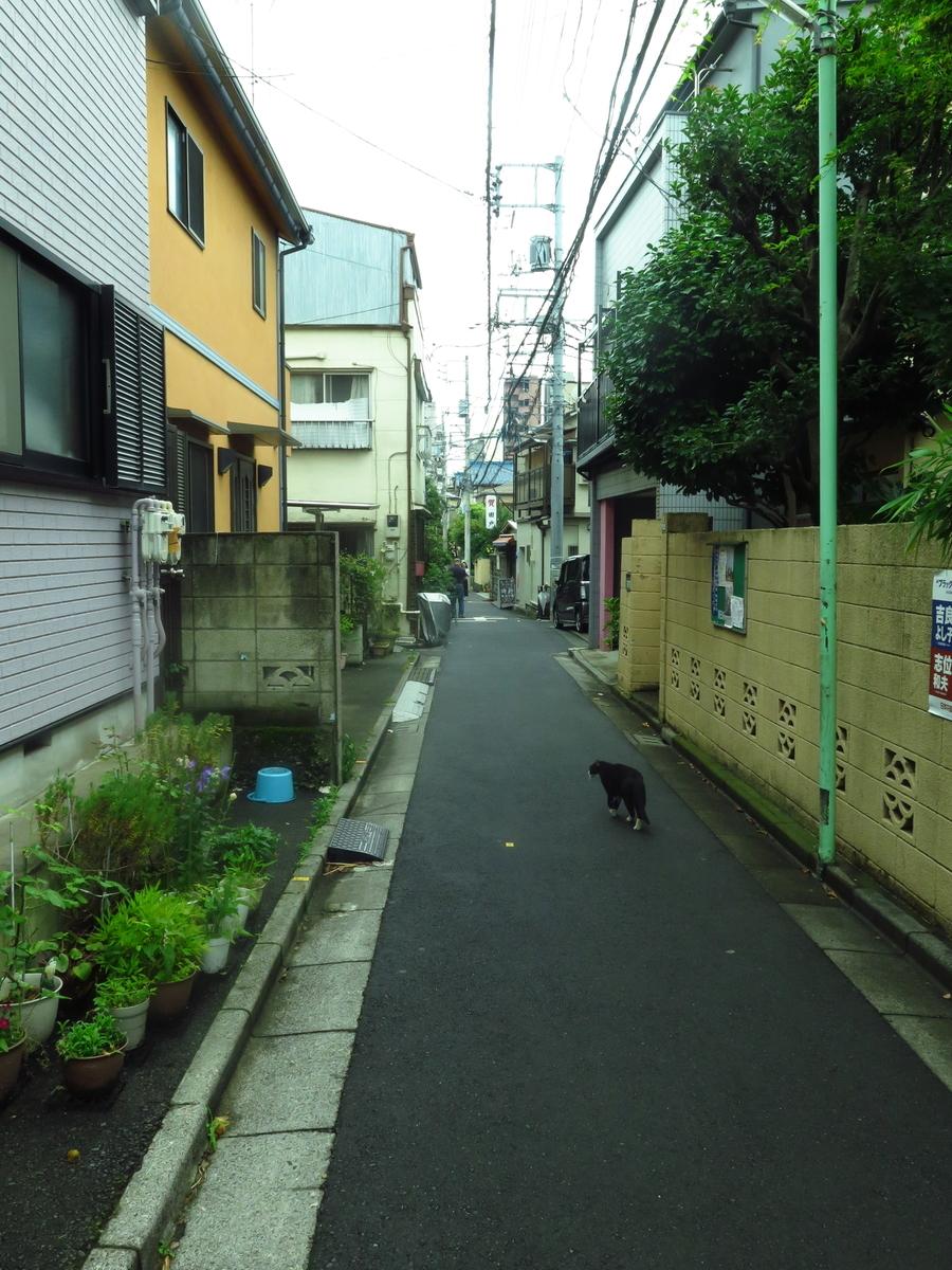 f:id:tsumakazu:20190713013223j:plain
