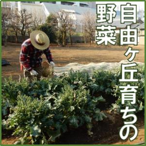 f:id:tsumami_gui:20170401162612p:plain