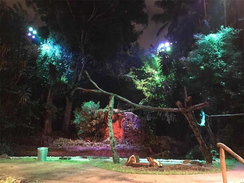 f:id:tsumasaki47:20171118221647j:image