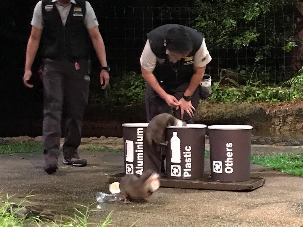 f:id:tsumasaki47:20171119063444j:image
