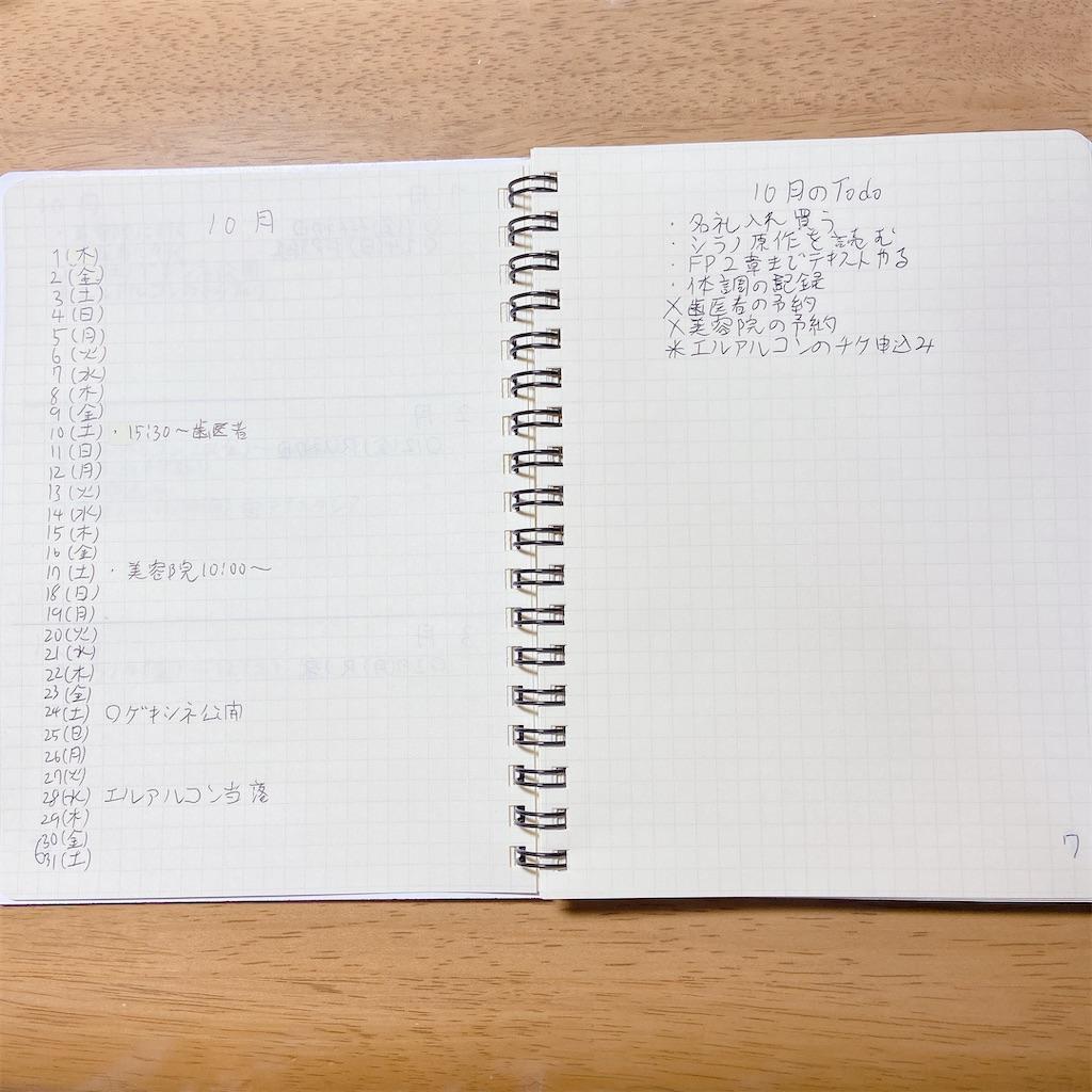 f:id:tsumasaki_zuka:20201029075446j:image