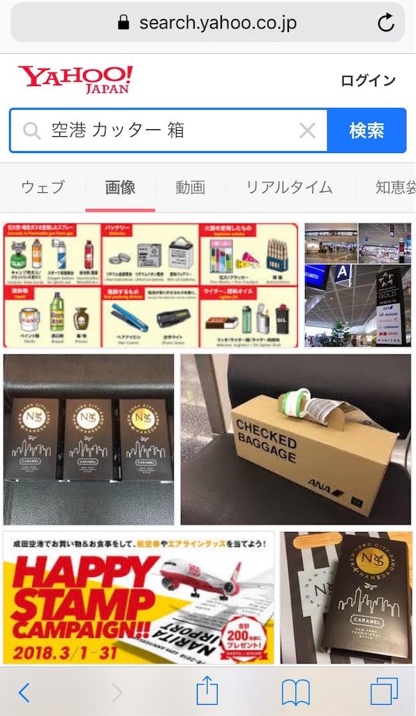 f:id:tsumashir0chan:20181118175023j:image