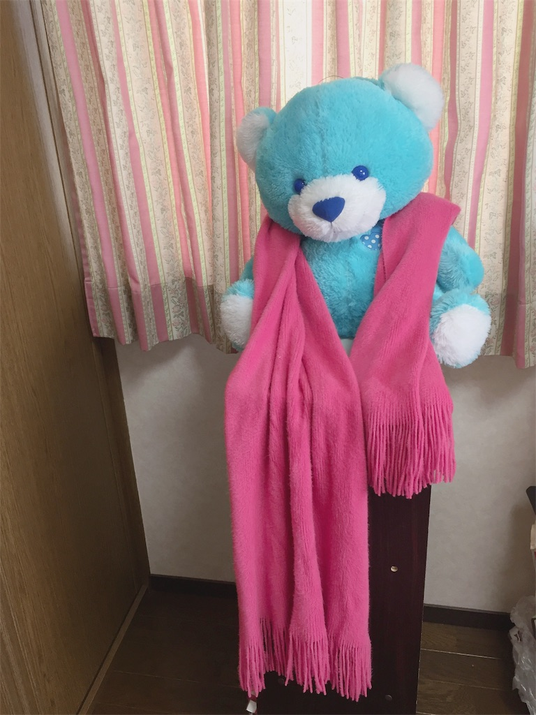 f:id:tsumashir0chan:20181209140300j:image