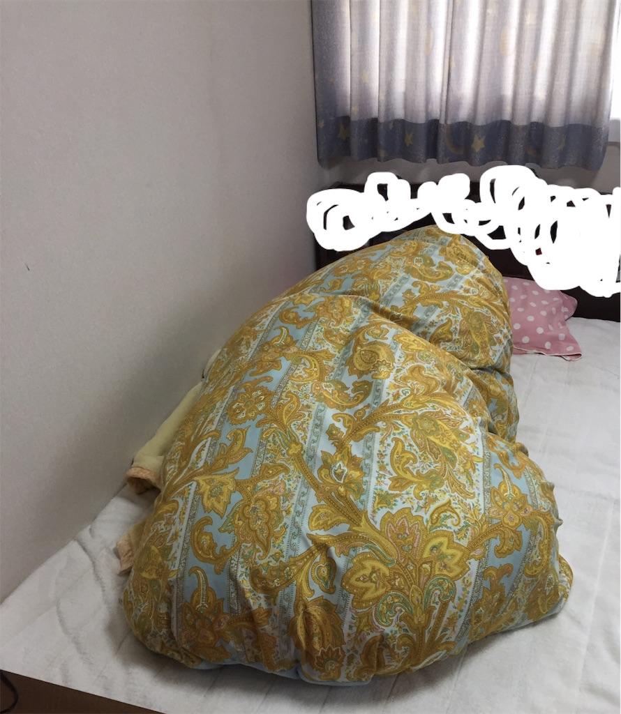 f:id:tsumashir0chan:20181211113858j:image