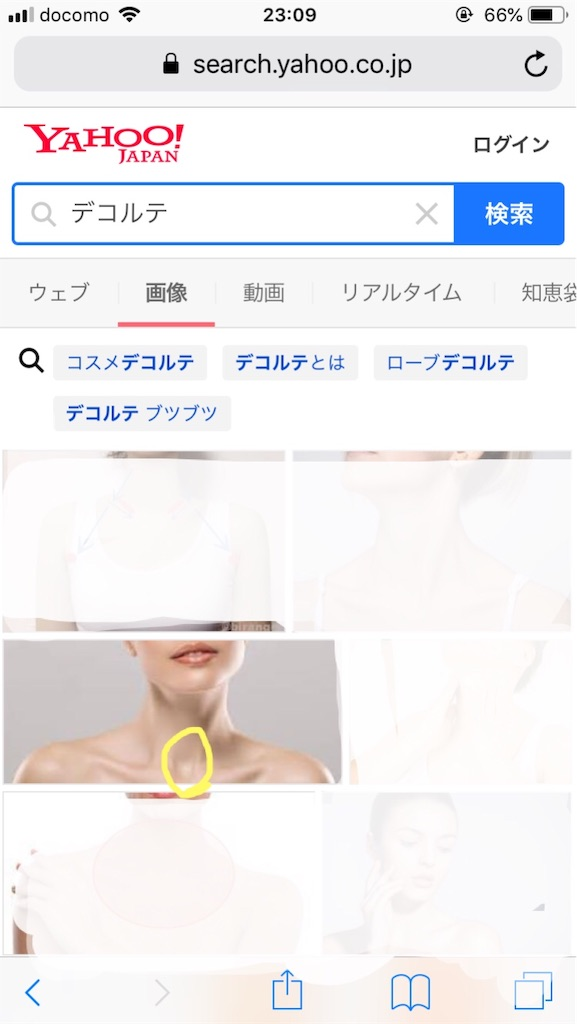 f:id:tsumashir0chan:20181229232144j:image