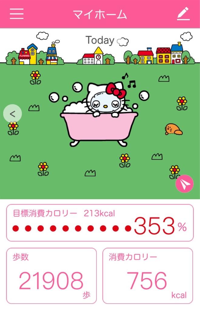 f:id:tsumashir0chan:20190117073711j:image