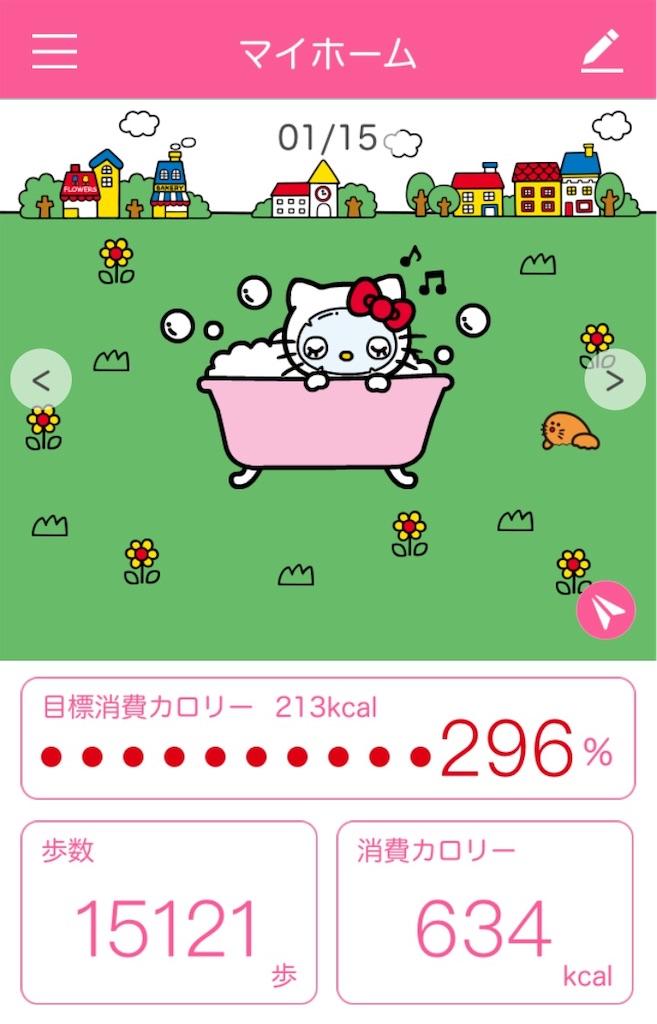 f:id:tsumashir0chan:20190117073717j:image
