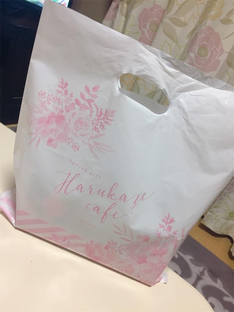 f:id:tsumashir0chan:20190314202902j:image
