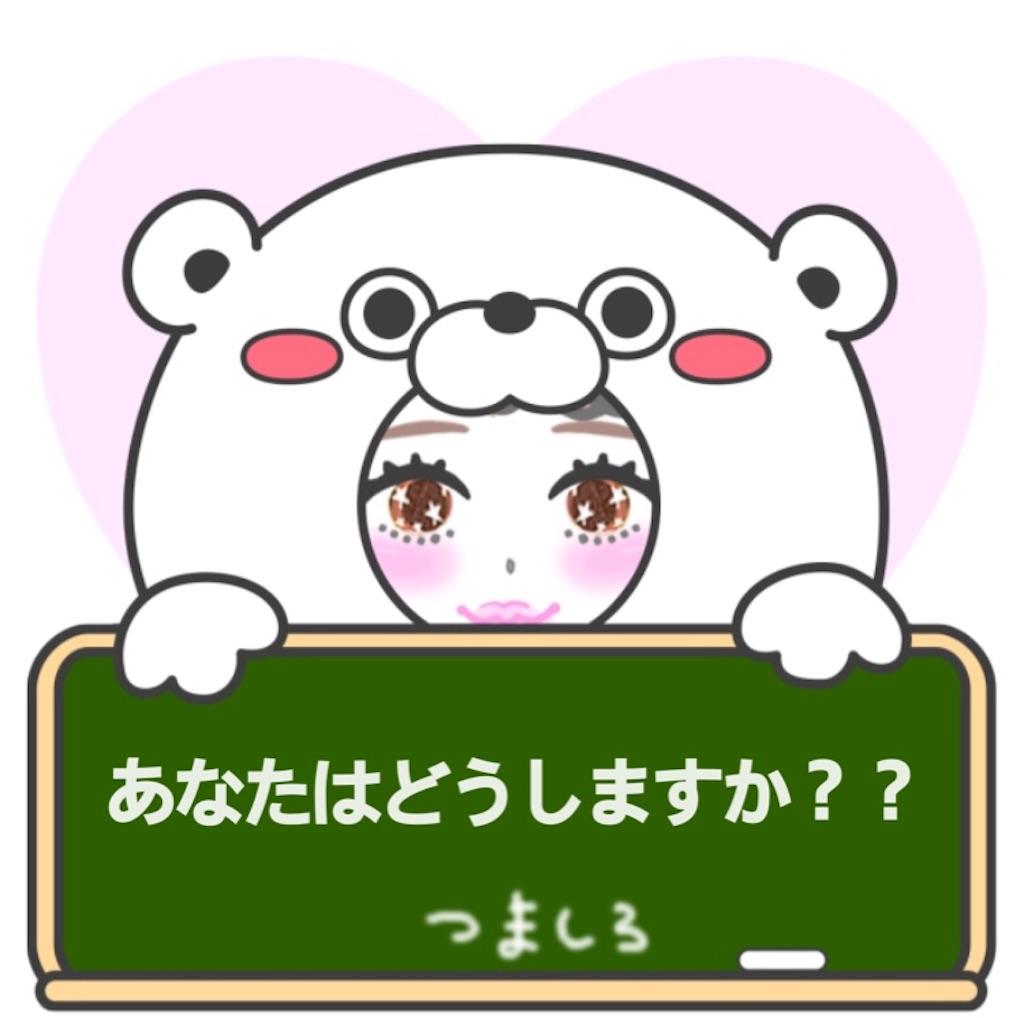 f:id:tsumashir0chan:20190321224503j:image