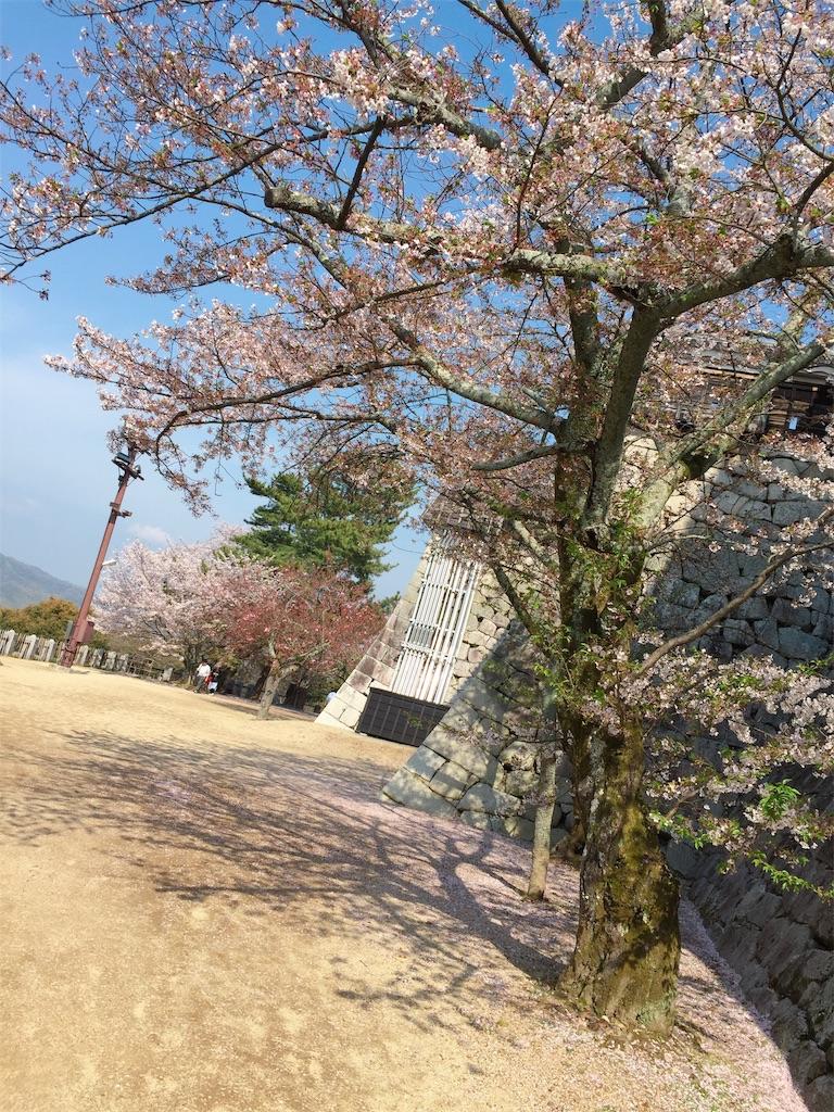 f:id:tsumashir0chan:20190409205428j:image