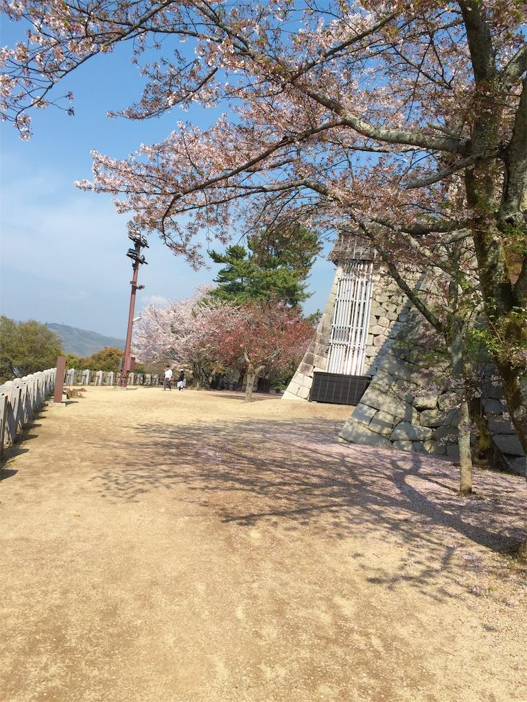 f:id:tsumashir0chan:20190409205848j:image