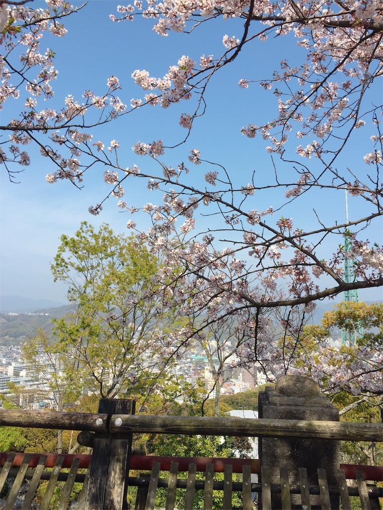 f:id:tsumashir0chan:20190409205853j:image