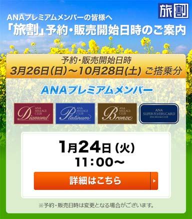 f:id:tsumatan:20170107012421j:plain