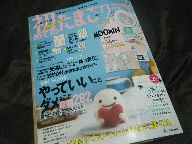 f:id:tsumatan:20171107165408j:plain