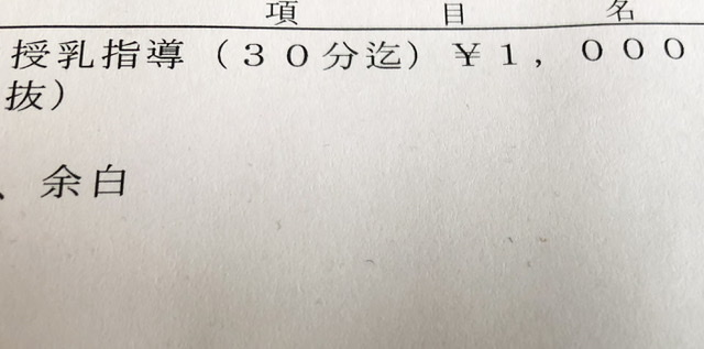 f:id:tsumatan:20210225111916j:plain