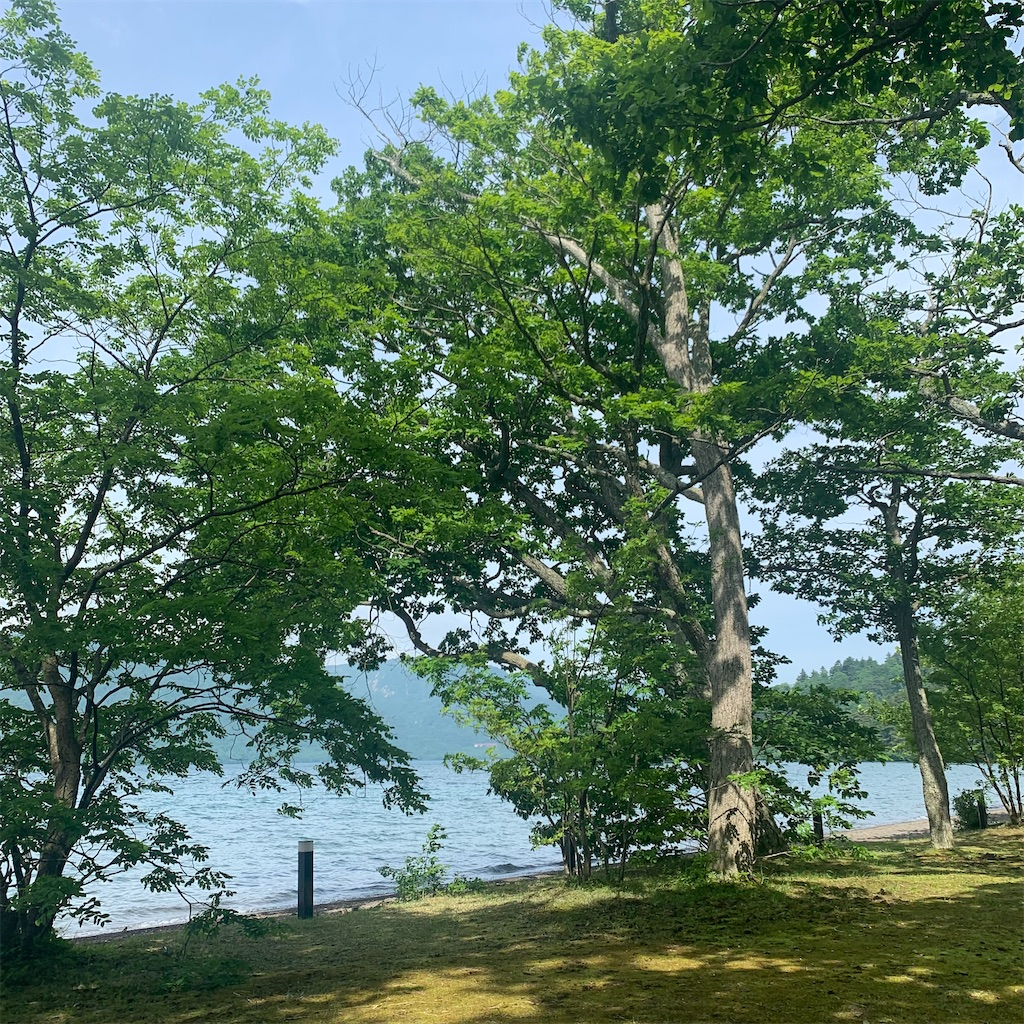 f:id:tsumecare_hitomi:20210613210306j:image