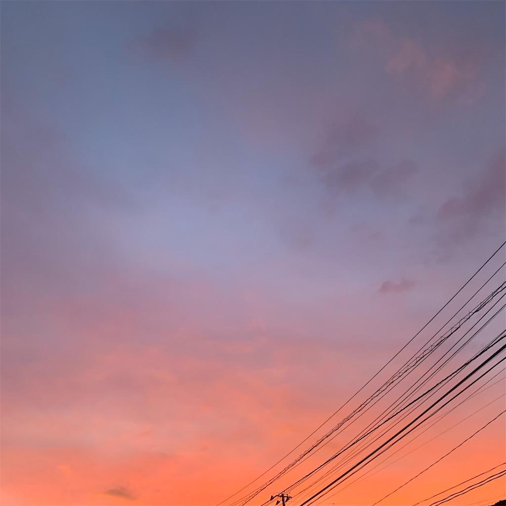 f:id:tsumecare_hitomi:20210727000157j:image
