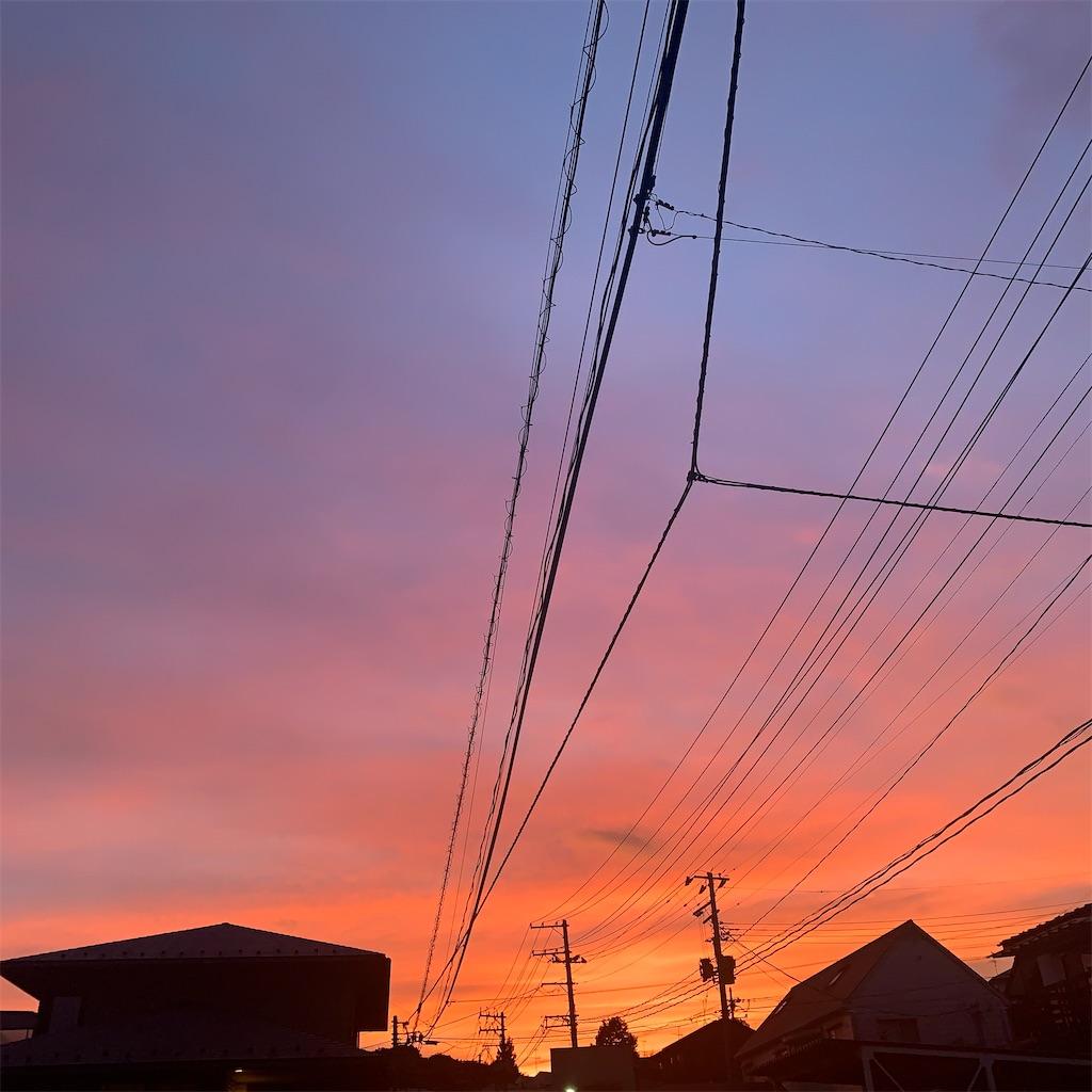 f:id:tsumecare_hitomi:20210727000237j:image