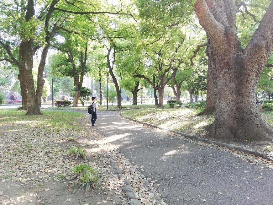 f:id:tsumehaya:20190513013757p:plain
