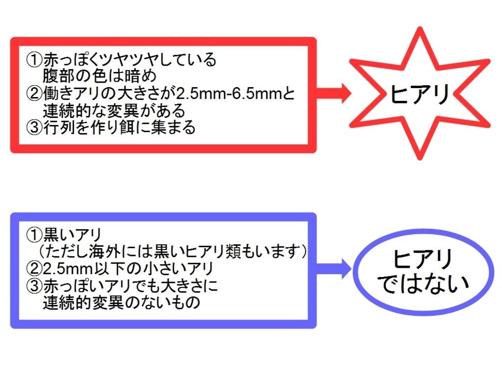 f:id:tsumekirimaru:20170714235018j:plain