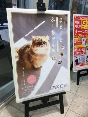 f:id:tsumekotto:20170507132444j:plain