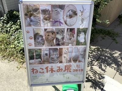 f:id:tsumekotto:20190923202014j:plain