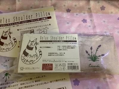 f:id:tsumekotto:20201201225118j:plain
