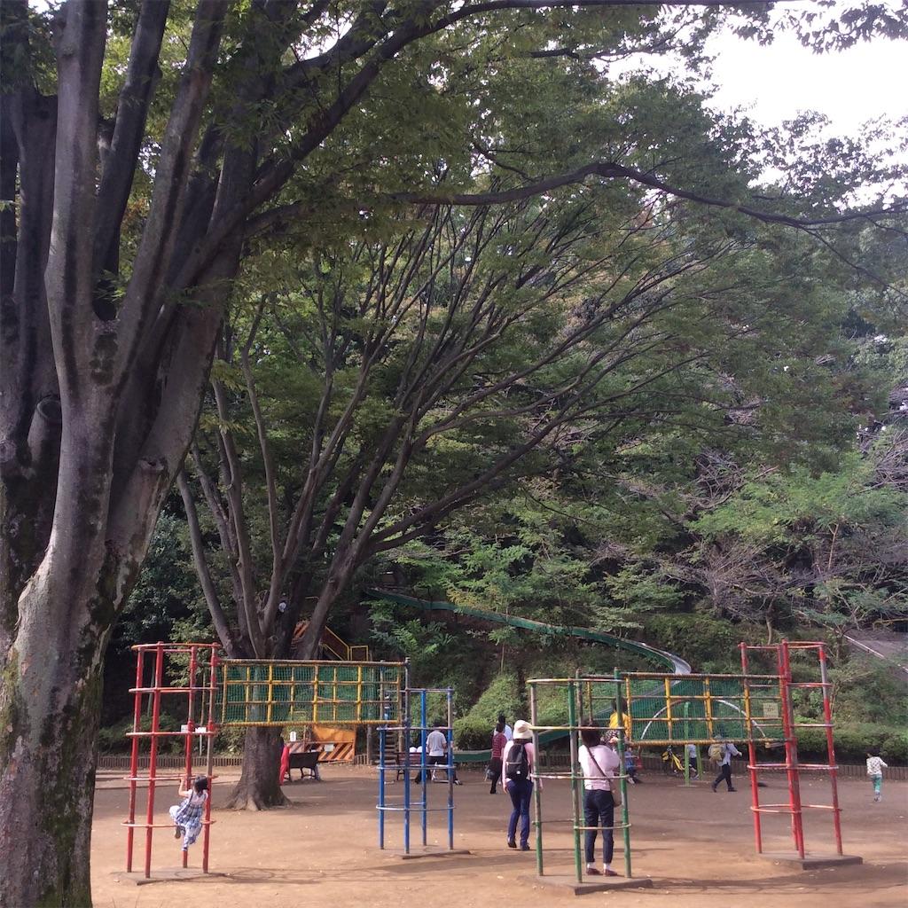 f:id:tsumetaimizuburo:20161107232543j:image