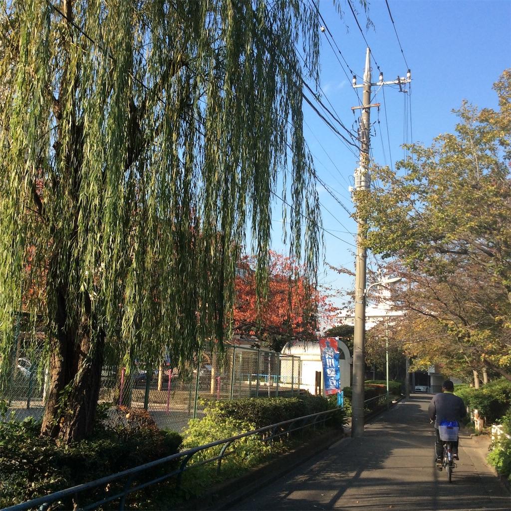 f:id:tsumetaimizuburo:20161119120721j:image