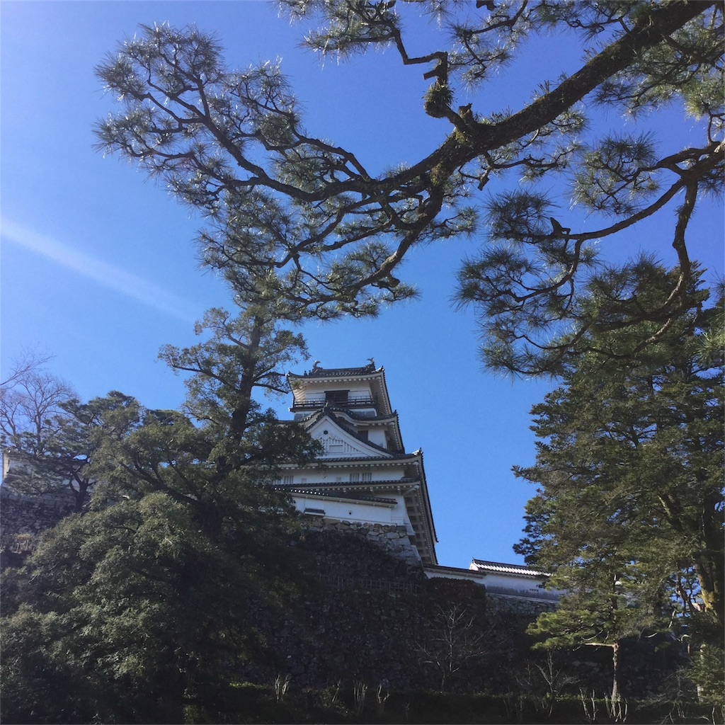 f:id:tsumetaimizuburo:20161231235653j:image