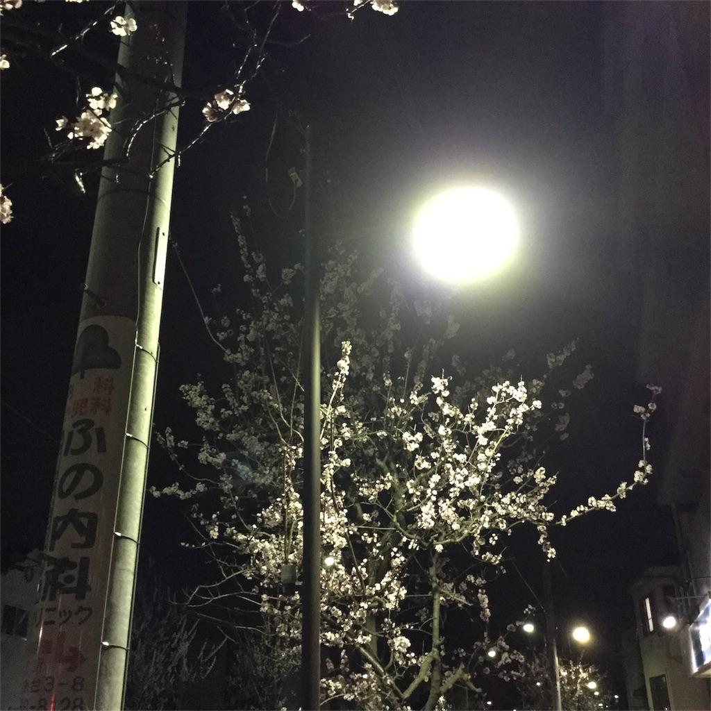 f:id:tsumetaimizuburo:20170401005519j:image