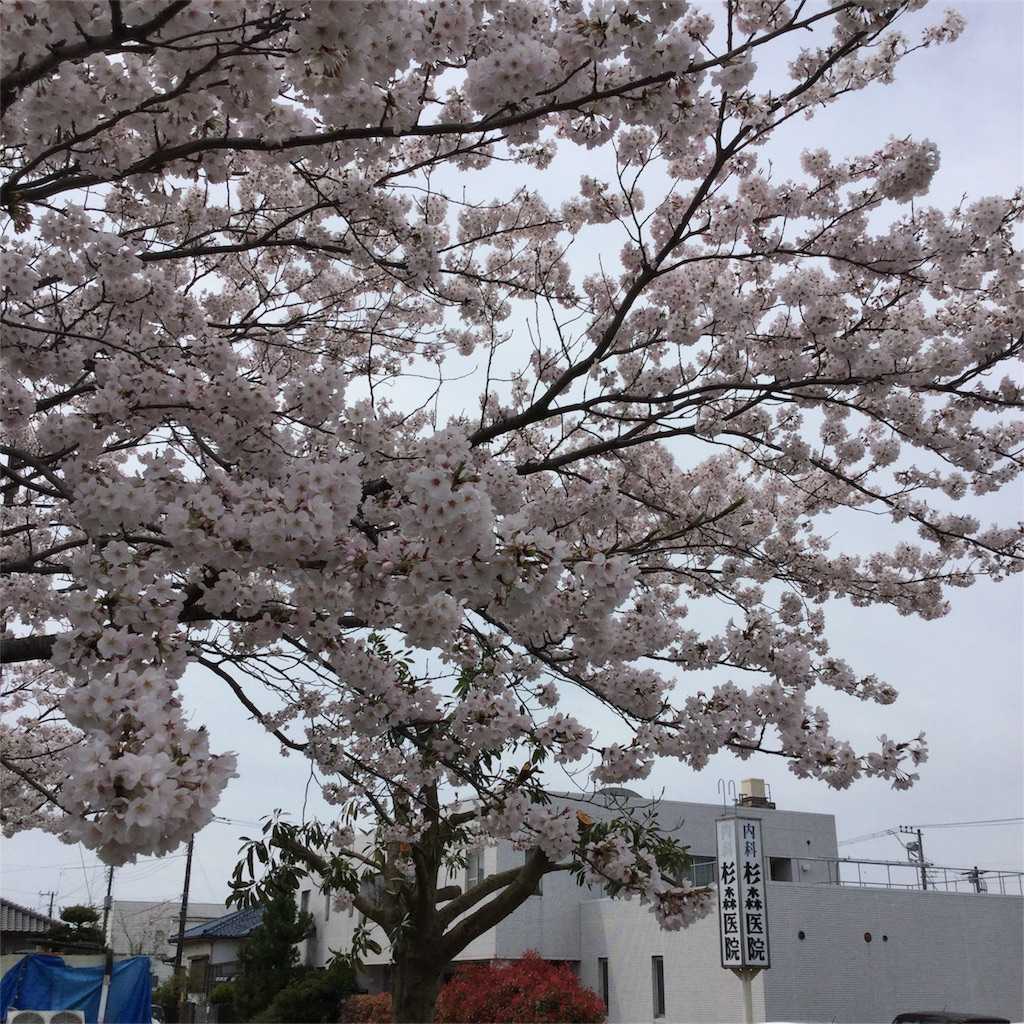 f:id:tsumetaimizuburo:20170410220946j:image