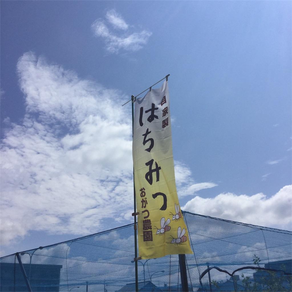 f:id:tsumetaimizuburo:20170717223318j:image