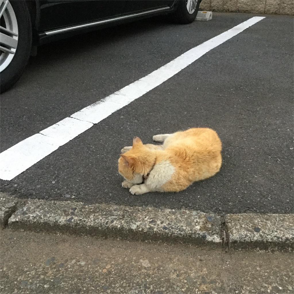 f:id:tsumetaimizuburo:20170813211548j:image
