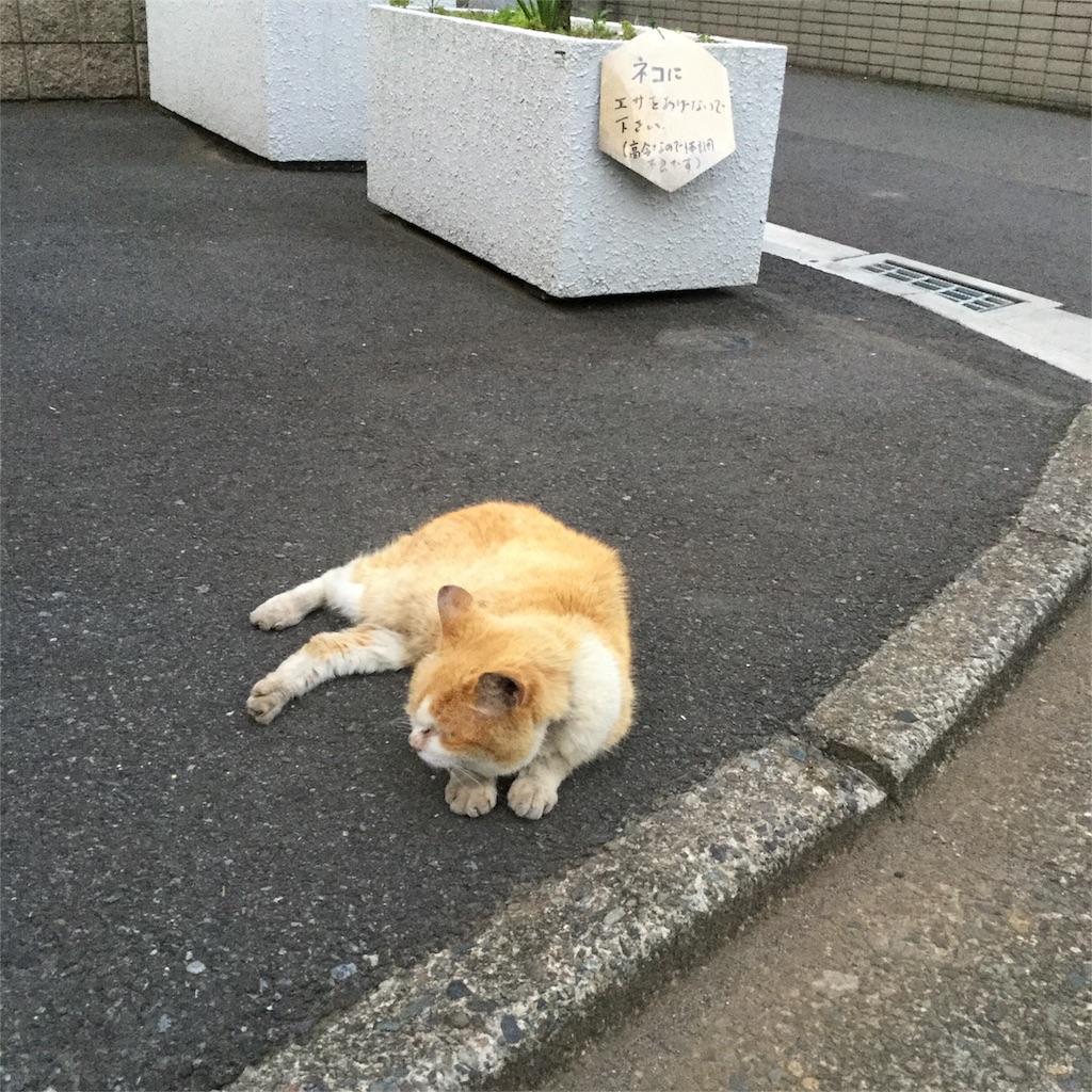 f:id:tsumetaimizuburo:20170813211908j:image